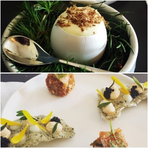 Quail's egg and spring ragout (top), crackers and chicken (bottom) - Aizle