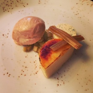 Rhubarb and custard - Purslane