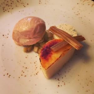 Rhubarb and custard - Purslane