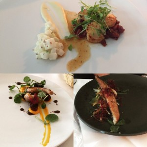 Scallops, quail, mackerel - Anfora