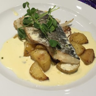 Sea bream - Elliot's (Apex)