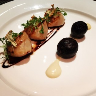 Scallops - The Observatory