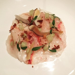 Ceviche of Rock Bass - Dine
