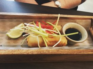 BBQ Pulled Pork Spring Rolls - The Lantern Room
