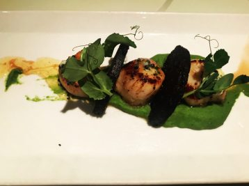 Scallops - Michael Neave