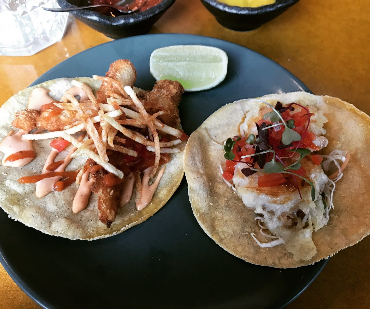 A cod and a prawn taco - Bodega