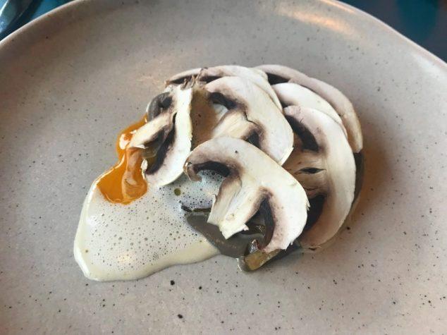 Mushroom - Sonder