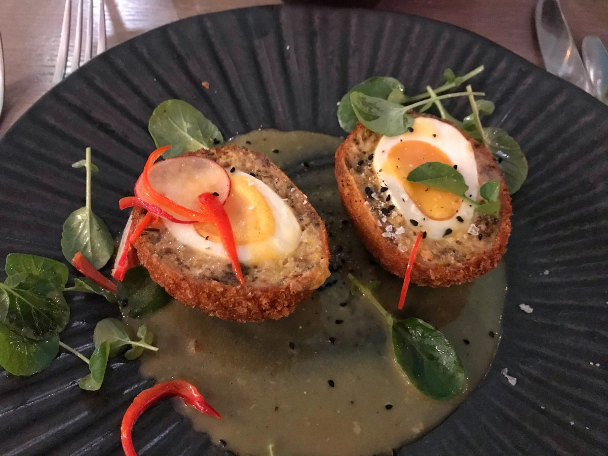 Scotch egg - Stocks